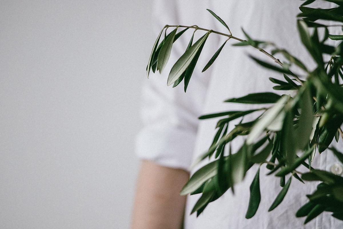 Faux serveur caché derrière une plante
