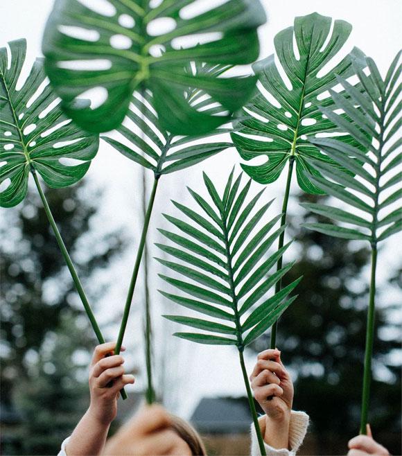 Main braudisant des feuilles de plantes vertes