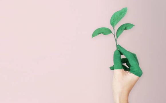 main tenant une feuille évoquant la notion RSE d'écologie